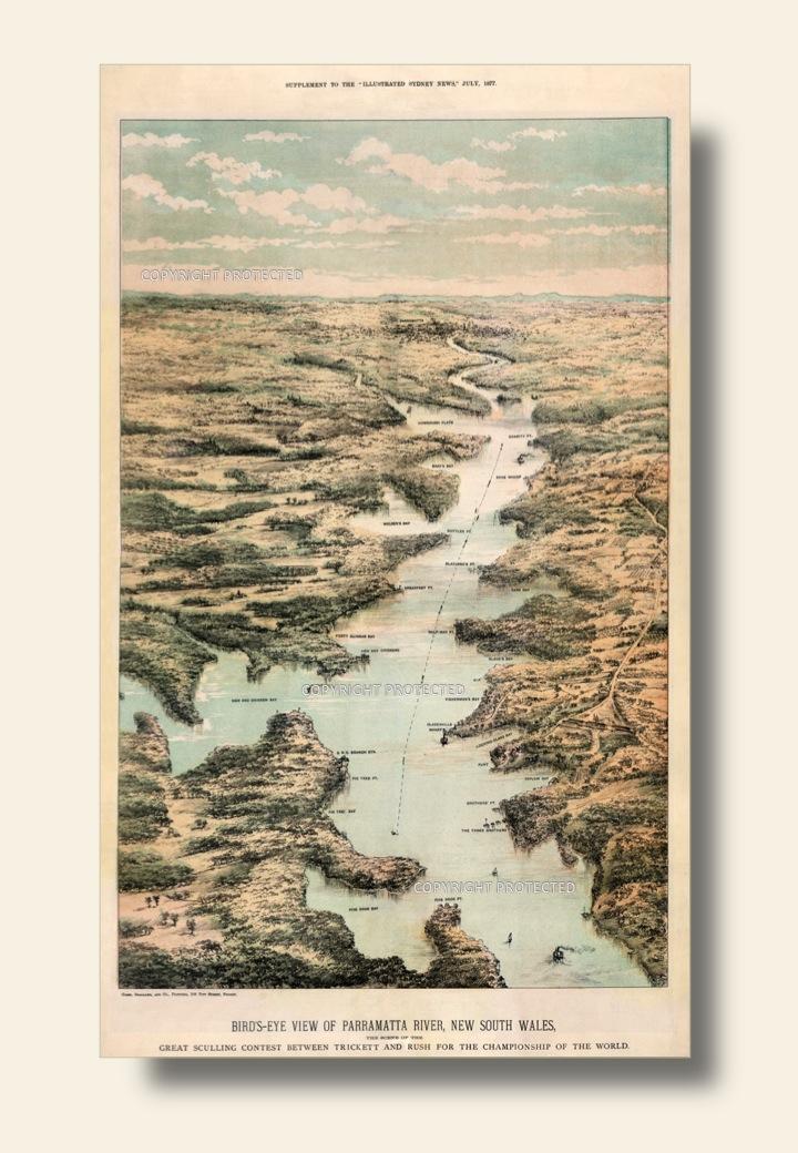 A Champion Course:  The Parramatta River