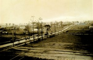 Concord Road 1918, showing recently planted trees