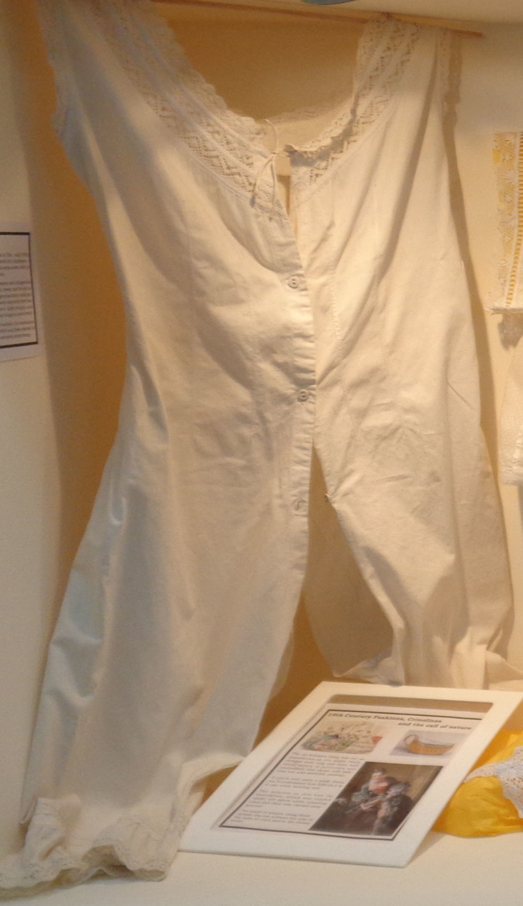 19th Century Fashions, Crinolines and the Call of Nature