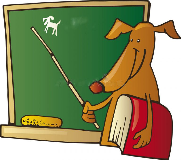 If a Dog was your Teacher . . .