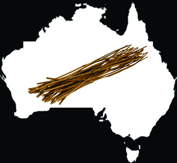The Stick . . and tips to surviving Australia